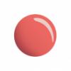 rosa-essenza